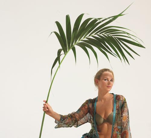 volets-madame-palmier